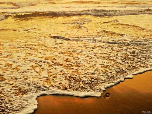 sea naturaleza beach nature méxico sunrise mexico gold mar sand nikon playa arena amanecer coolpix veracruz footprint oro p500 professionalphotography huella nautla liquidgold nikonp500 coolpixp500 fotografíaprofesional mexicanphotographers orolíquido fotógrafosmexicanos