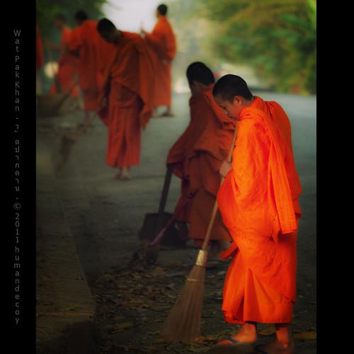 sunrise monk buddhism unesco worldheritagesite 300mm monks laos luangprabang sunrice novice novices 1xp colorefex 1raw olympuse400 laospdr humandecoy watpakkhan alwaysexc pscs4 magicunicornverybest semperdiatramproc battak