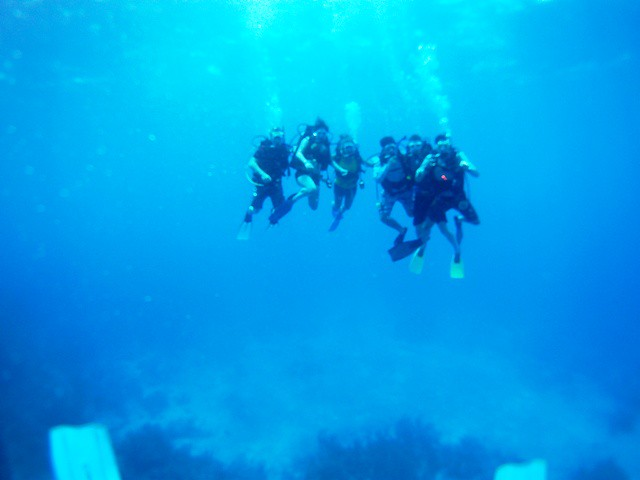 Scuba Camps For Teenagers