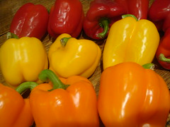 plant(0.0), paprika(1.0), chili pepper(1.0), bell pepper(1.0), vegetable(1.0), yellow pepper(1.0), red bell pepper(1.0), peppers(1.0), bell peppers and chili peppers(1.0), italian sweet pepper(1.0), peperoncini(1.0), produce(1.0), fruit(1.0), food(1.0), pimiento(1.0), habanero chili(1.0),