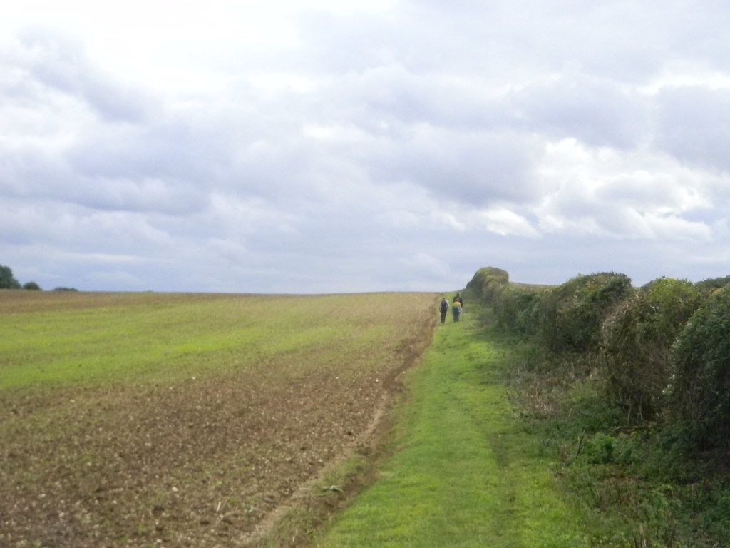 Field Great Chesterford to Newport
