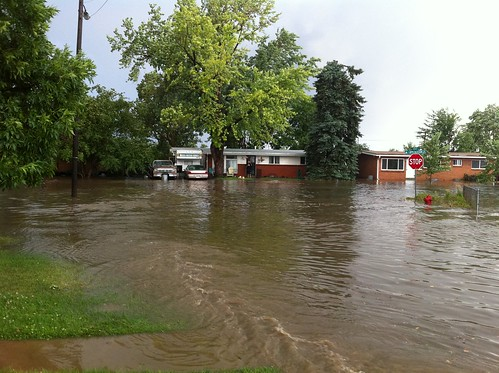 Flooding in Westminser