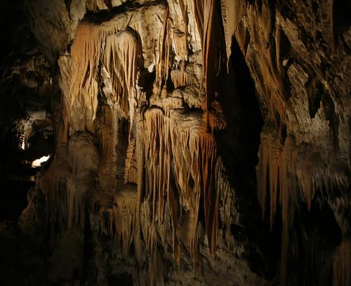 2011_07_07_Postojna-Cave_061