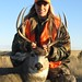 Montana Mule Deer, 328 yard shot!