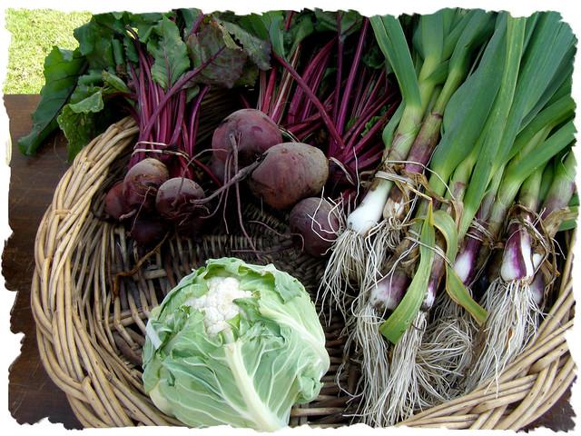 Panier De L Gumes Des Jardins De Non Res Flickr Photo