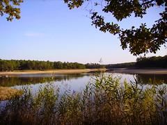 Le Grand étang de La Jemaye, Périgord
