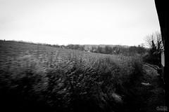 En route vers les vacances ! - Photo of Selles-sur-Nahon