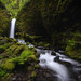 Something Green ~ Columbia River Gorge by Jamey Pyles