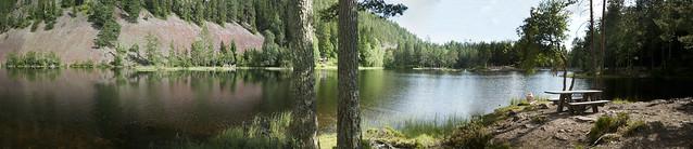 Strømsdammen er omgit flott natur med skog og en brattskrent