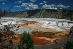 8.3 - Mammoth Hot Springs
