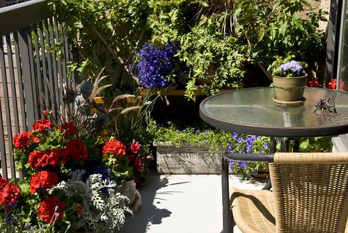 My Balcony Garden