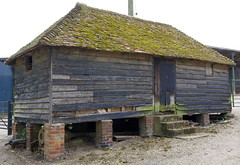 venerable shed
