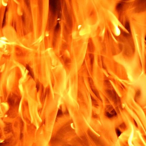 Russia: Fire in Michurinskoye - IMG_8223-1 - a close crop