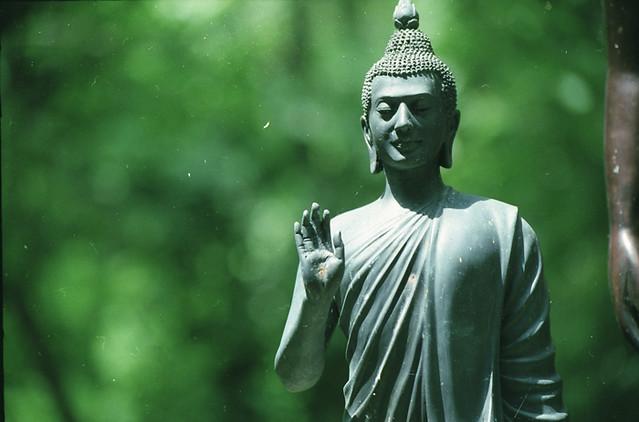 buddha-wat-tam-wua1
