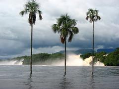 Parque Nacional Canaima, Salto Sapo, Venezuela