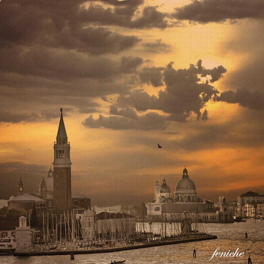 venezia 31