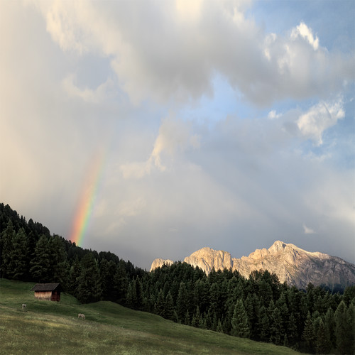 horses rainbow dreams dolomiti carezza passocostalunga magicunicornverybest sbfmasterpiece sbfgrandmaster