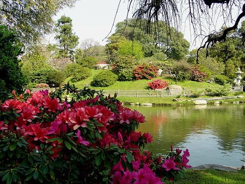 Hostel 06 central buenos aires argentina 11 palermo for Cascadas jardin zen