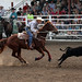 Sarpy Fair Rodeo 438