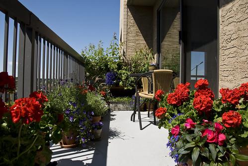 My Balcony Sky Garden