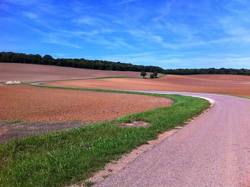 Champs à côté de Villemoiron-en-Othe
