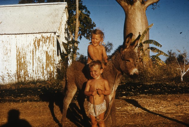 1953-ca - Beverley Thurle and Michael Brett Young and pet donkey Kimberley at KRS - KHS-2011-46-bx-PD