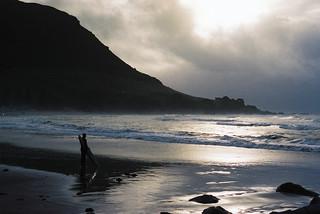 Lone surfer, Mount Maunganui New Zealand