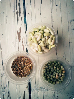 Peas and beans and spinach seeds