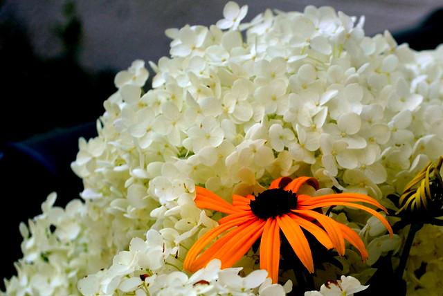 Gratitude Bouquet