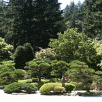 Japanese Gardens, Shades of Green
