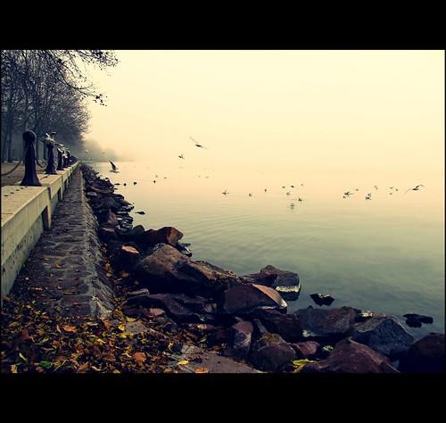hungary természet balaton tó táj köd pára tájkép balatonfüred ősz víz vízpart saariysqualitypictures canonsx10 magicunicornverybest mygearandme