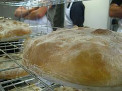 Resting bread