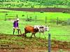 Farmer... by Raj Says