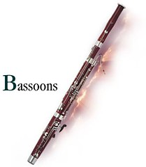 flute(0.0), western concert flute(0.0), cue stick(0.0), woodwind instrument(1.0), wind instrument(1.0),