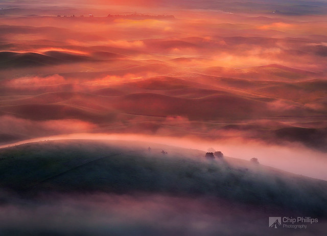 Foggy Sunrise Palouse - Being the Best Travel Photographer