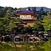 Kyoto_Golden_Temple by Christoph Pfeilstücker