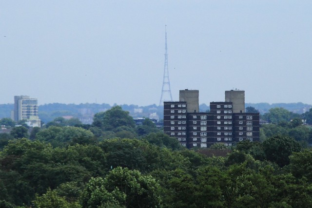 Crystal Palace Television Mast seen from The Treetop Walkway, Kew Gardens