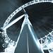 Worm's Eye by David Turney | www.davidturneyphotography.com