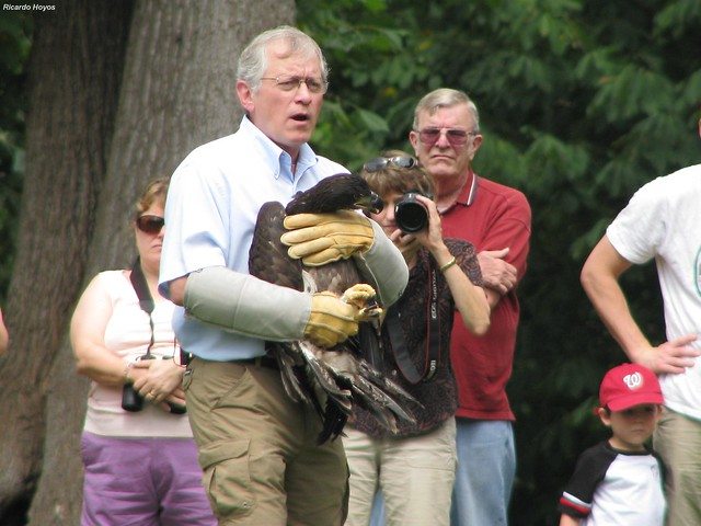 The 2014 Eagle Festival at Mason Neck State Park