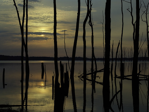lake sunrise reservoir manasquan