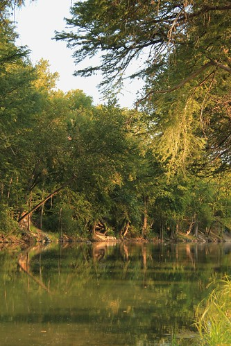 trees reflection green water cypress newbraunfels guadaluperiver cypressbendpark