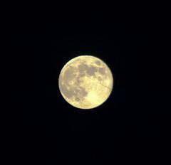 It's a full Moon!