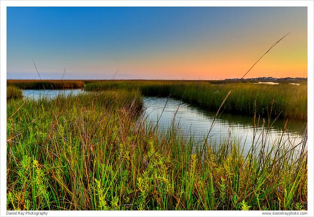 Bayou Vista, TX - Bayou Wetlands