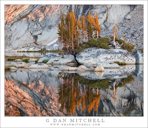 Alpenglow, Trees, and Granite - Upper Young Lake