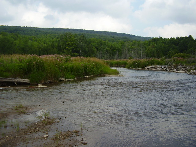 The Beaver River