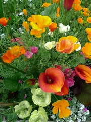 Living flower arrangement