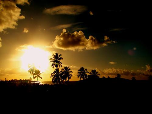 ocean brazil beach brasil sunrise atlantic palmtree goldenhour maragogi alagoas ruleofthirds doublyniceshot doubleniceshot tripleniceshot