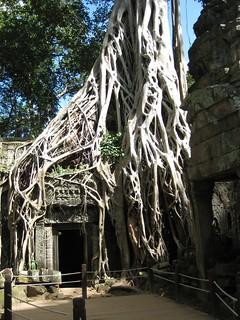 Vietnam et Cambodge 2009-img_5602