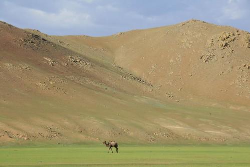 geotagged mongolia ulaanbaatar mng nalayh geo:lat=4782076239 geo:lon=10733728409