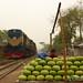 Watermelon Stand on the Train Tracks - Joypurhat, Bangladesh